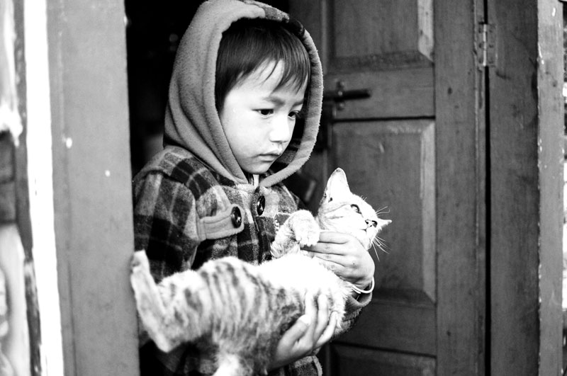 Heartwarming expression of a boy cradling his cat